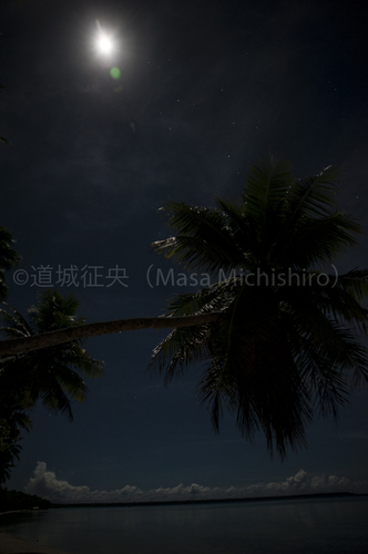 DSC_0129-2.jpg