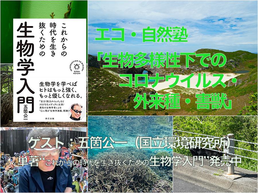 eco_goka-2 のコピー.jpg