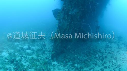 fujikawa_scrw-2.jpg